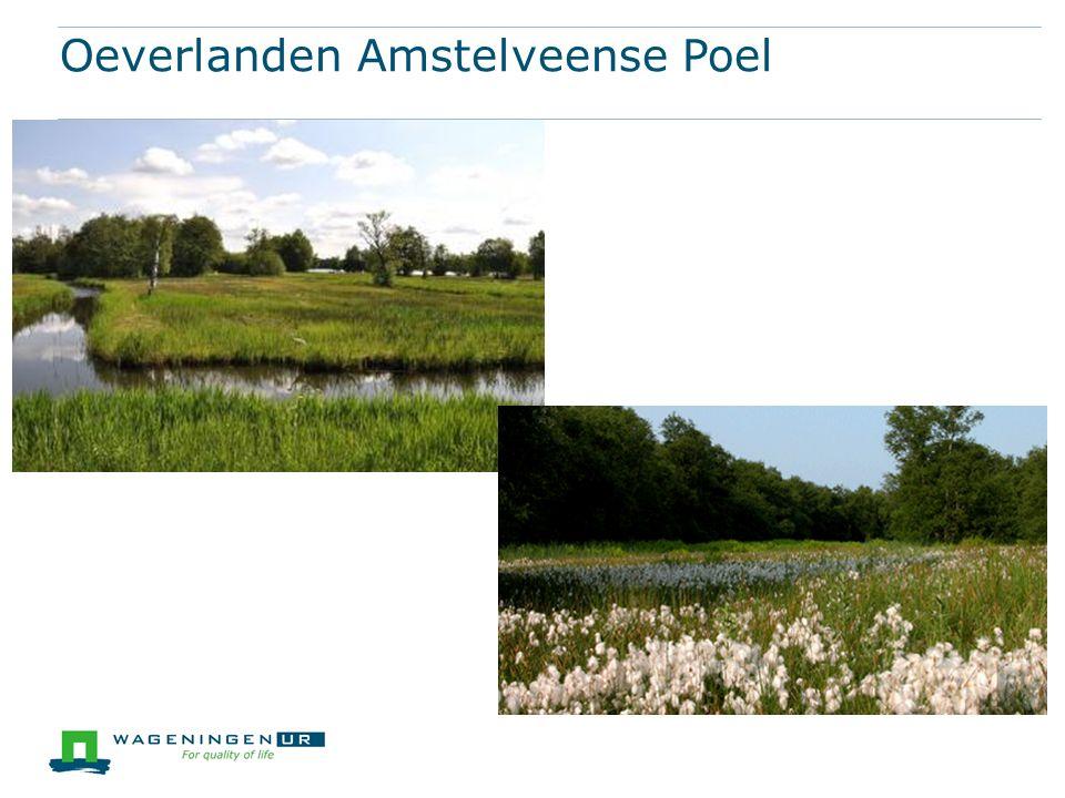 Oeverlanden Amstelveense Poel