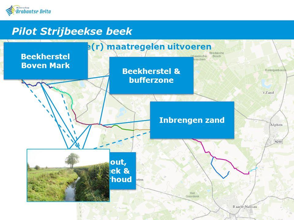 Leren van de zuiderburen: aanpak Merkske 1.Intern huiswerk: -screeningsdocument (beschikbare informatie) -doelstellingennota (watersysteem + win-win kansen met andere aspecten/belangen) 2.