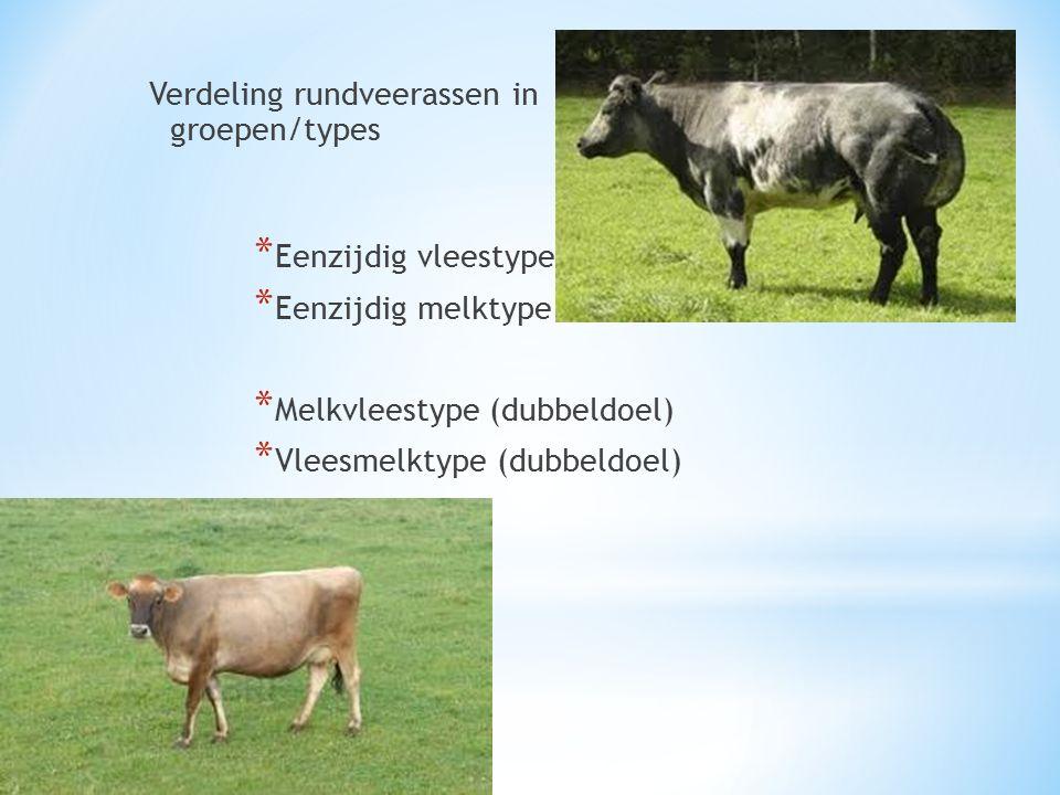 Verdeling rundveerassen in groepen/types * Eenzijdig vleestype * Eenzijdig melktype * Melkvleestype (dubbeldoel) * Vleesmelktype (dubbeldoel)