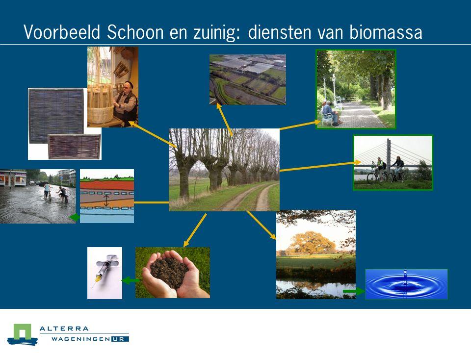 Voorbeeld Schoon en zuinig: diensten van biomassa
