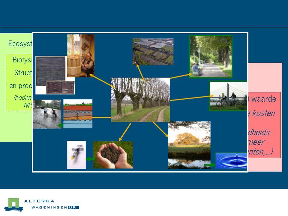 Diensten (producten, waterberging/ verlaging overstroming srisico, CO2- opslag, Biofysische Structuren en processen (bodemtype, NPP) Ecosysteem en biodiversiteit Functies (water- opname, biomassa - productie Voordelen Bijdrage aan gezondheid, veiligheid, etc (econ.) waarde (lagere kosten voor gezondheids- zorg, meer recreanten,..)
