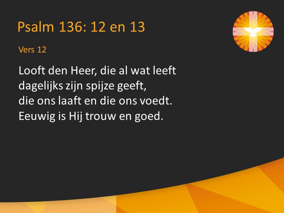 Vers 13 Psalm 136: 12 en 13 Aan den God des hemels zij eer en dank en heerschappij, want zijn goedertierenheid zal bestaan in eeuwigheid.