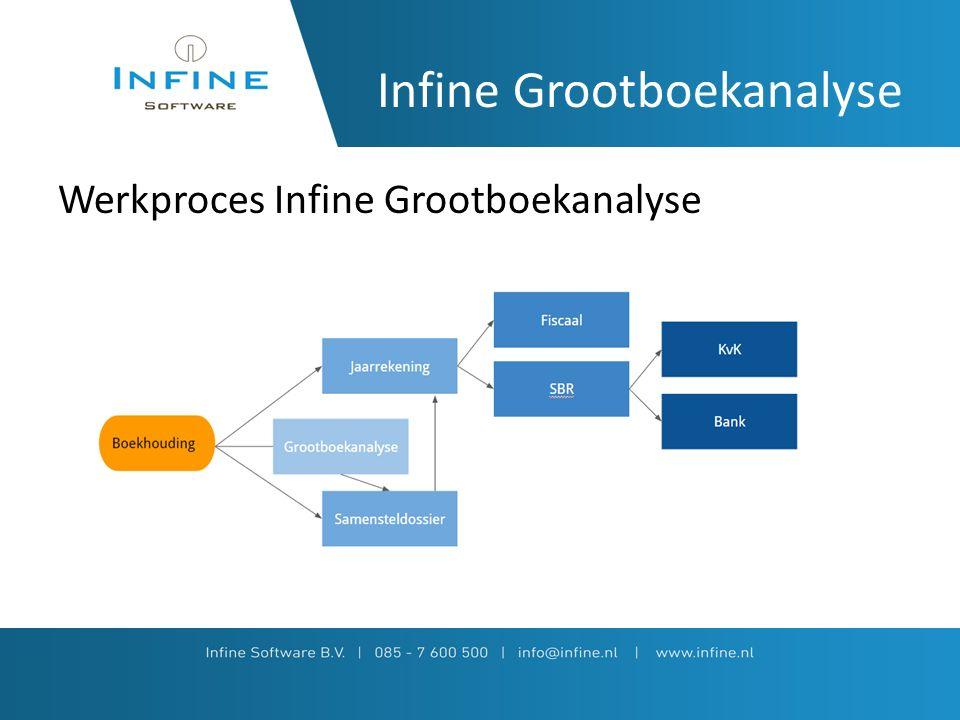 Infine Grootboekanalyse Werkproces Infine Grootboekanalyse