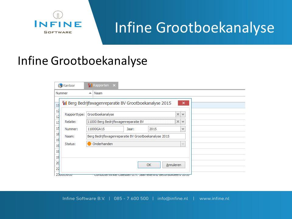 Importeren cijfers Infine Grootboekanalyse