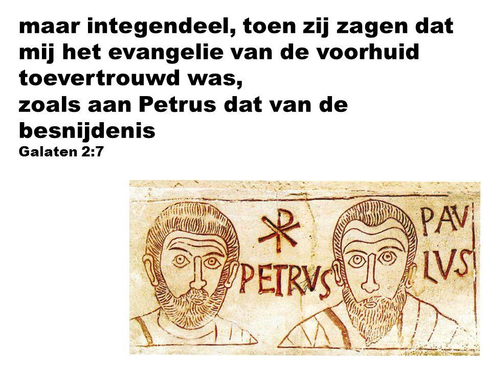 maar integendeel, toen zij zagen dat mij het evangelie van de voorhuid toevertrouwd was, zoals aan Petrus dat van de besnijdenis Galaten 2:7