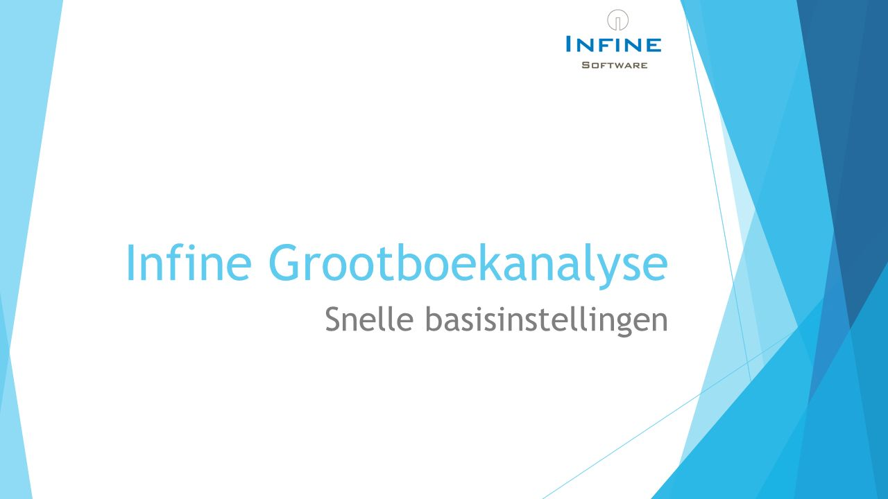 Infine Grootboekanalyse Snelle basisinstellingen