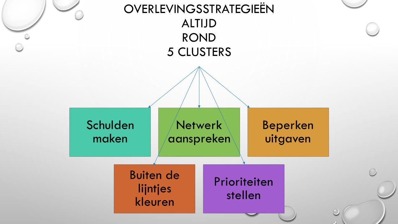 OVERLEVINGSSTRATEGIEËN ALTIJD ROND 5 CLUSTERS Schulden maken Netwerk aanspreken Beperken uitgaven Buiten de lijntjes kleuren Prioriteiten stellen