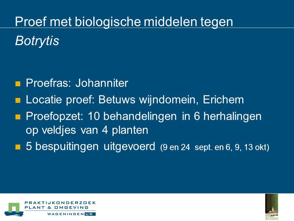 Proef met biologische middelen tegen Botrytis Proefras: Johanniter Locatie proef: Betuws wijndomein, Erichem Proefopzet: 10 behandelingen in 6 herhalingen op veldjes van 4 planten 5 bespuitingen uitgevoerd (9 en 24 sept.