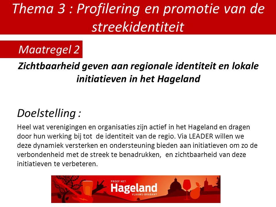 Thema 3 : Profilering en promotie van de streekidentiteit Zichtbaarheid geven aan regionale identiteit en lokale initiatieven in het Hageland Doelstelling : Heel wat verenigingen en organisaties zijn actief in het Hageland en dragen door hun werking bij tot de identiteit van de regio.