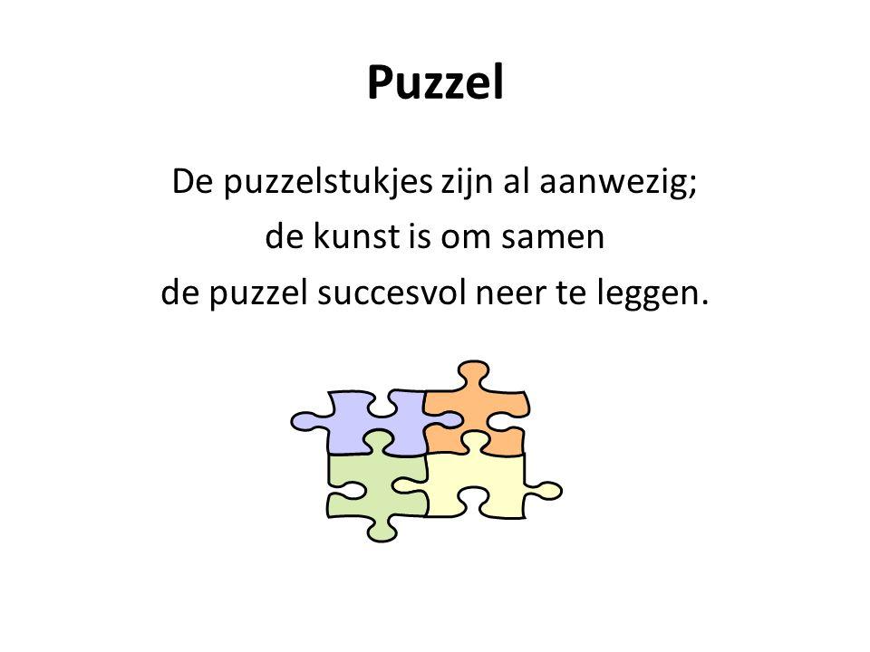 Puzzel De puzzelstukjes zijn al aanwezig; de kunst is om samen de puzzel succesvol neer te leggen.