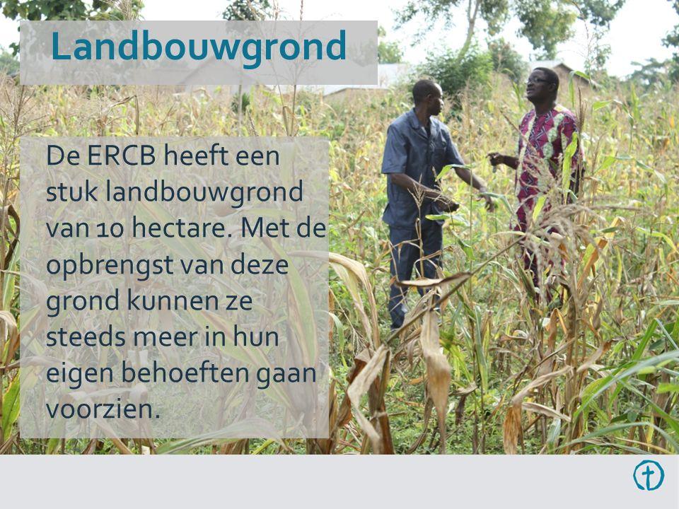 Landbouwgrond De ERCB heeft een stuk landbouwgrond van 10 hectare.