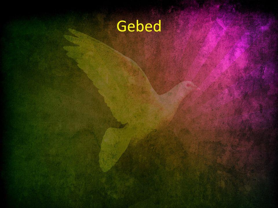 Schriftlezing: Psalm 124 6 Geprezen de HEER, die ons niet ten prooi gaf aan hun tanden: 7 wij zijn als een vogel ontsnapt uit het net van de vogelvangers, het net is gescheurd en wij, wij zijn ontkomen.