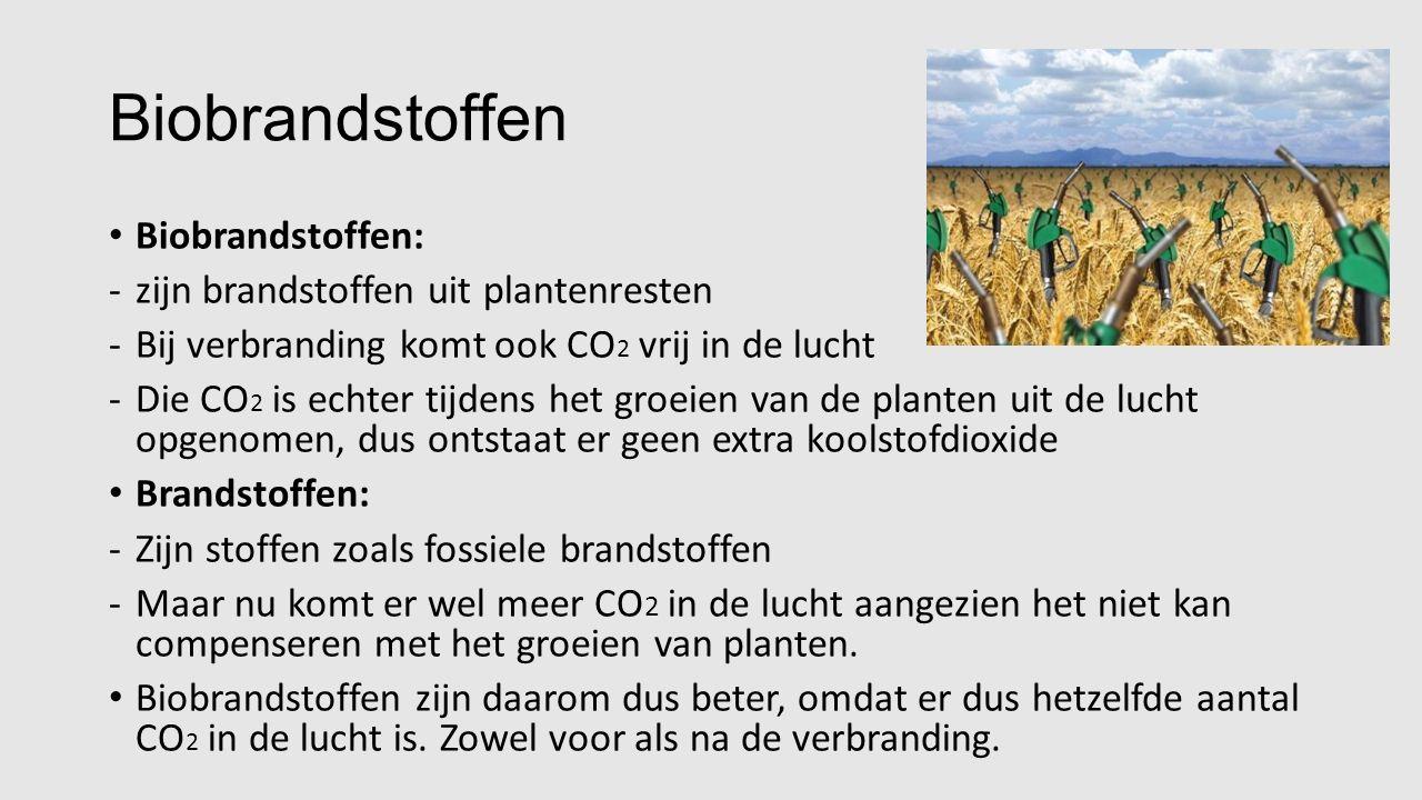 Biobrandstoffen Biobrandstoffen: -zijn brandstoffen uit plantenresten -Bij verbranding komt ook CO 2 vrij in de lucht -Die CO 2 is echter tijdens het groeien van de planten uit de lucht opgenomen, dus ontstaat er geen extra koolstofdioxide Brandstoffen: -Zijn stoffen zoals fossiele brandstoffen -Maar nu komt er wel meer CO 2 in de lucht aangezien het niet kan compenseren met het groeien van planten.