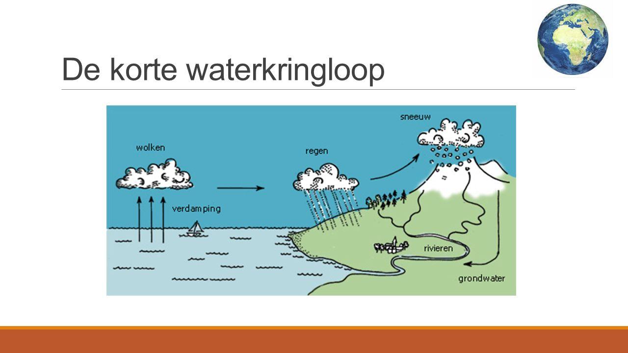 Drie opties van neerslag Wordt niet opgenomen door de bodem en loopt via de het oppervlakte terug naar de zee/rivier Het wordt opgenomen door de bodem en keert uiteindelijk terug via het grondwater naar de zee Het water verdampt, al dan niet nadat het is opgenomen door de zee