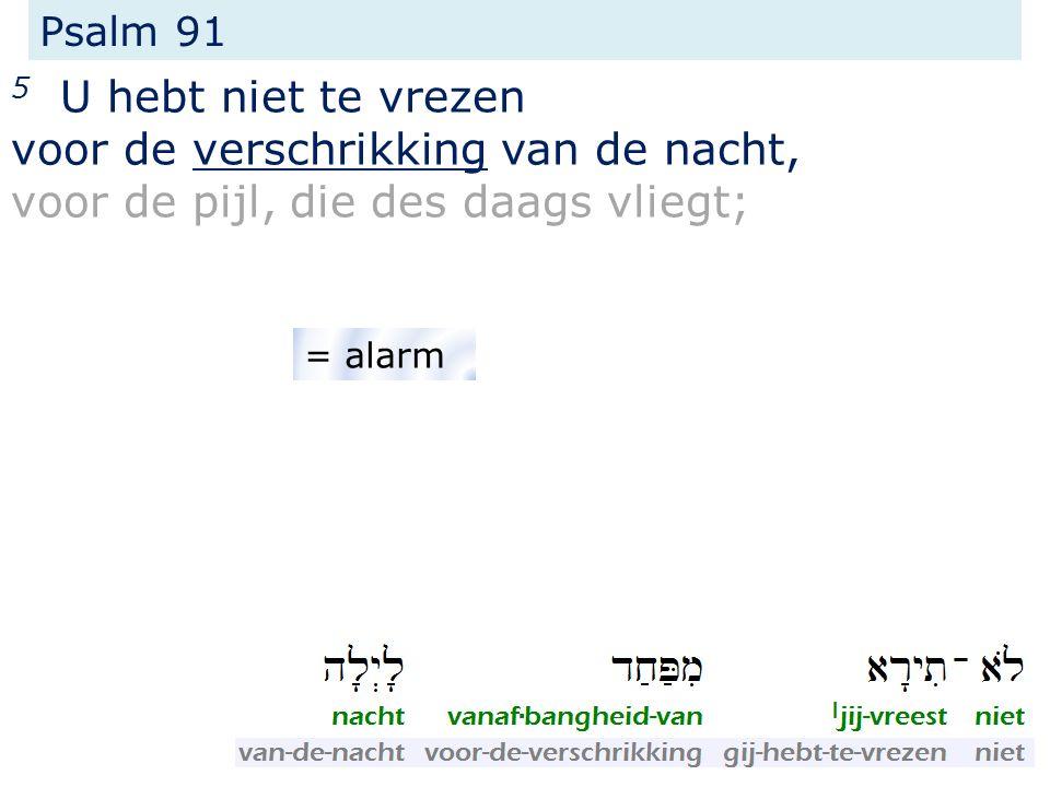 Psalm 91 5 U hebt niet te vrezen voor de verschrikking van de nacht, voor de pijl, die des daags vliegt; = alarm