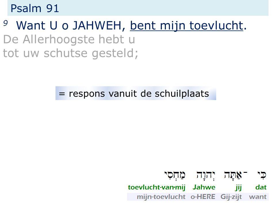 Psalm 91 9 Want U o JAHWEH, bent mijn toevlucht. De Allerhoogste hebt u tot uw schutse gesteld; = respons vanuit de schuilplaats