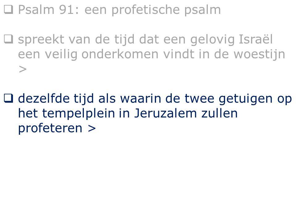  Psalm 91: een profetische psalm  spreekt van de tijd dat een gelovig Israël een veilig onderkomen vindt in de woestijn >  dezelfde tijd als waarin de twee getuigen op het tempelplein in Jeruzalem zullen profeteren >