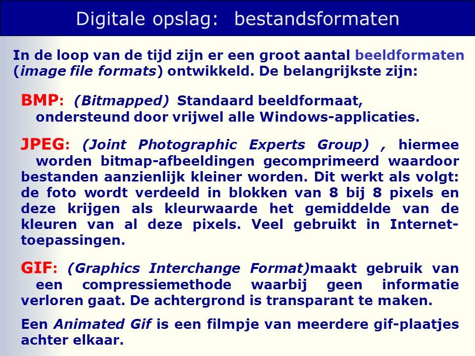 Digitale opslag: bestandsformaten In de loop van de tijd zijn er een groot aantal beeldformaten (image file formats) ontwikkeld.