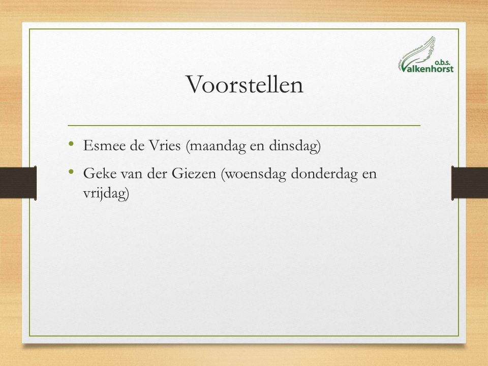 Voorstellen Esmee de Vries (maandag en dinsdag) Geke van der Giezen (woensdag donderdag en vrijdag)