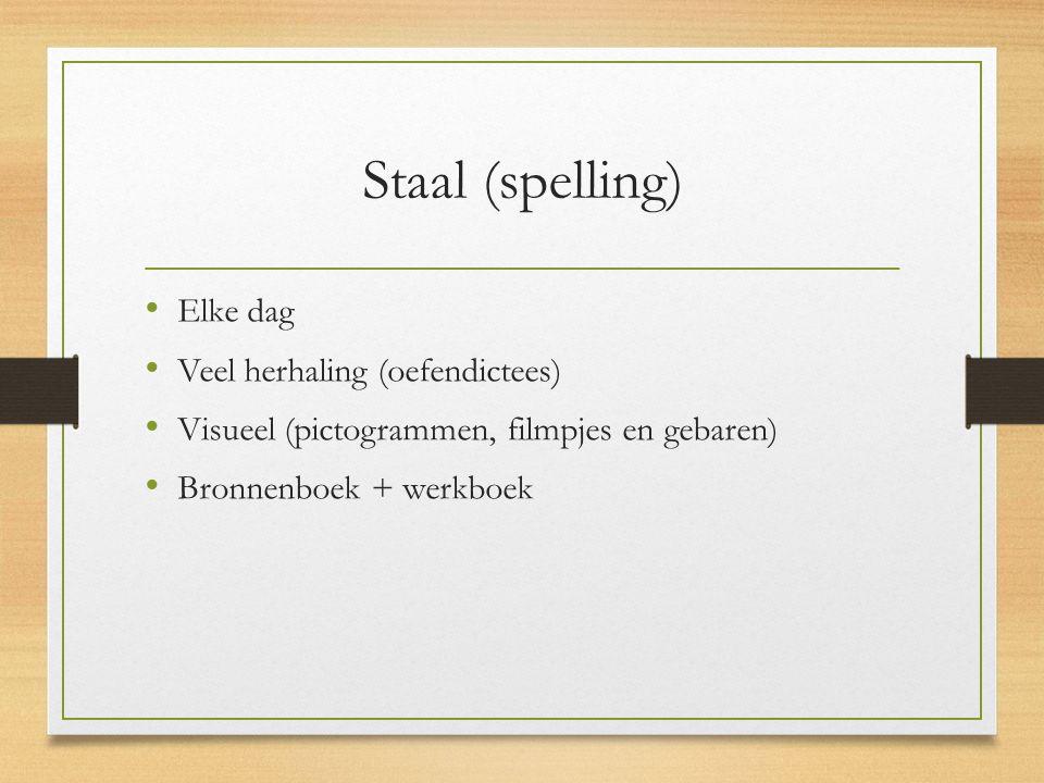 Staal (spelling) Elke dag Veel herhaling (oefendictees) Visueel (pictogrammen, filmpjes en gebaren) Bronnenboek + werkboek