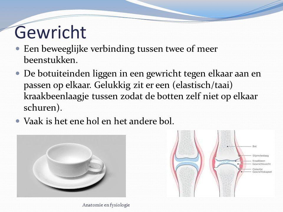 Gewricht Een beweeglijke verbinding tussen twee of meer beenstukken.