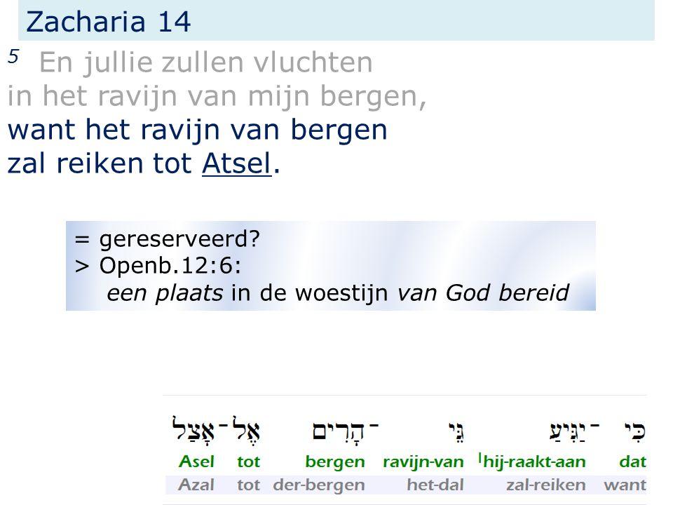 Zacharia 14 5 En jullie zullen vluchten in het ravijn van mijn bergen, want het ravijn van bergen zal reiken tot Atsel.