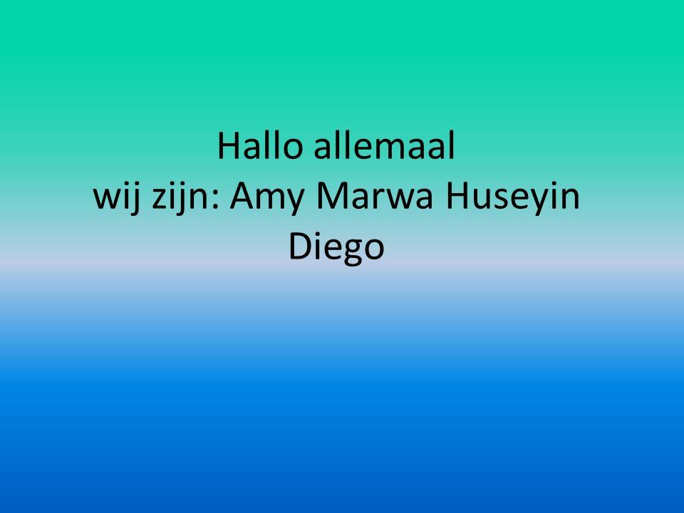 Hallo allemaal wij zijn: Amy Marwa Huseyin Diego