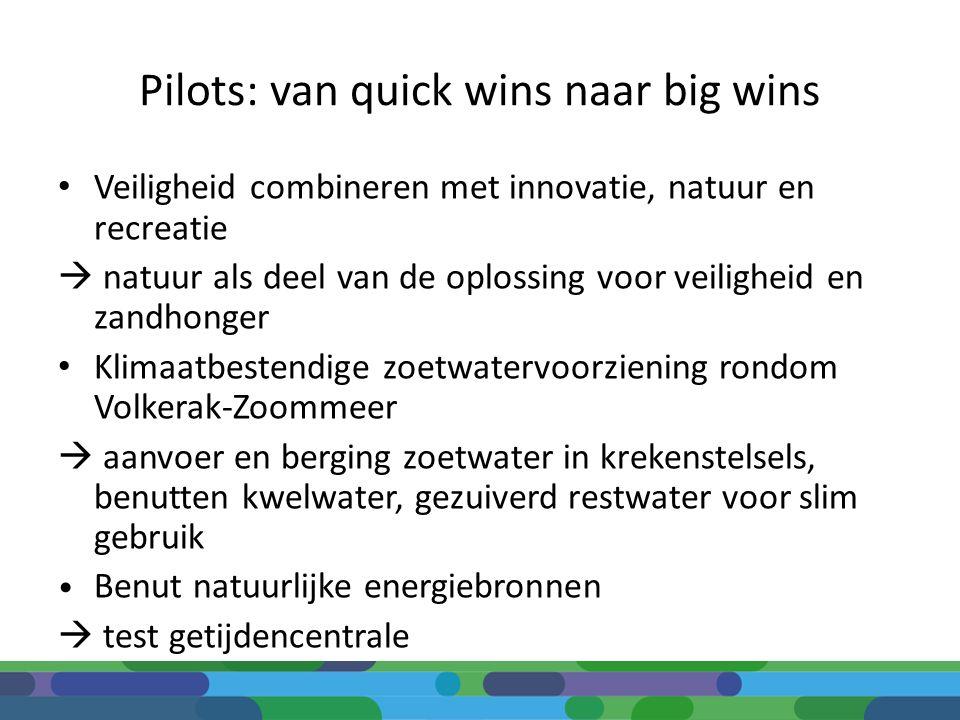 Pilots: van quick wins naar big wins Veiligheid combineren met innovatie, natuur en recreatie  natuur als deel van de oplossing voor veiligheid en za