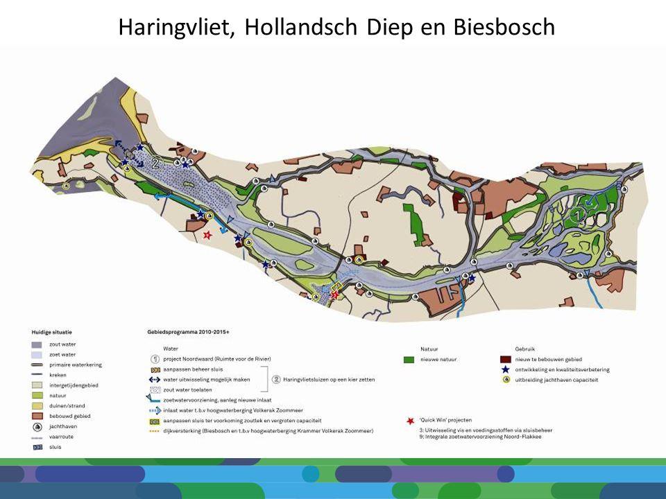Haringvliet, Hollandsch Diep en Biesbosch