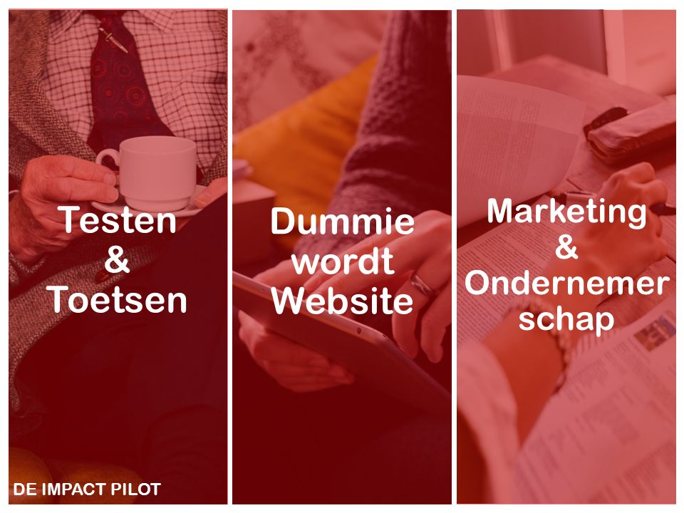 12 Dummie wordt Website Testen & Toetsen Marketing & Ondernemer schap DE IMPACT PILOT