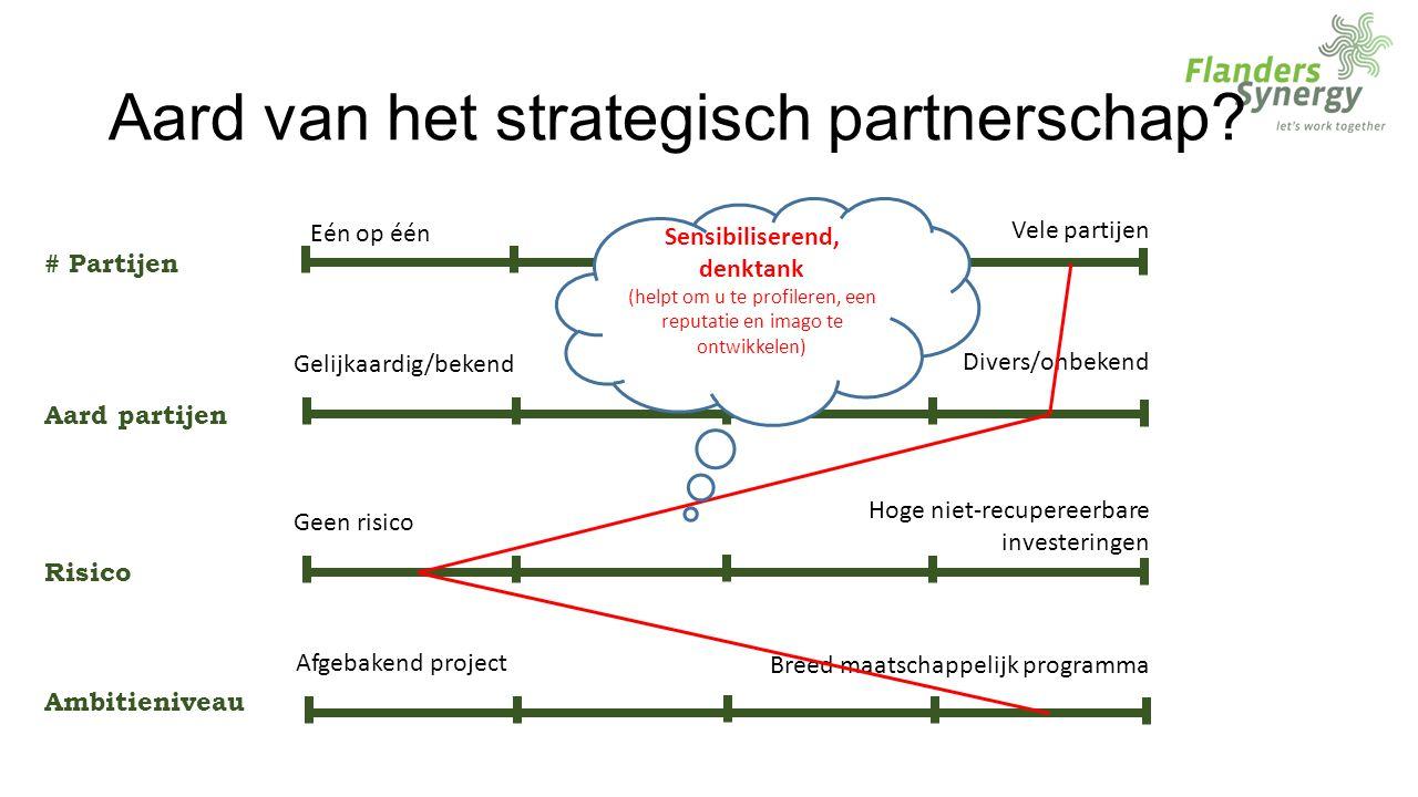Aard van het strategisch partnerschap.
