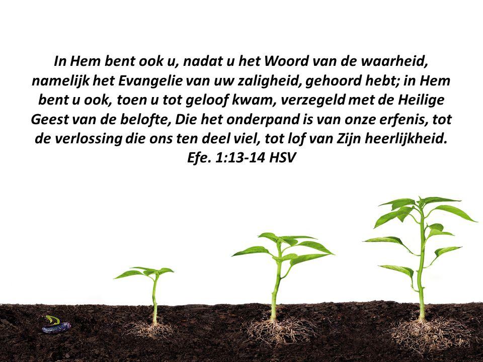 In Hem bent ook u, nadat u het Woord van de waarheid, namelijk het Evangelie van uw zaligheid, gehoord hebt; in Hem bent u ook, toen u tot geloof kwam