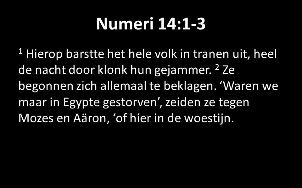 Numeri 14:1-3 1 Hierop barstte het hele volk in tranen uit, heel de nacht door klonk hun gejammer.