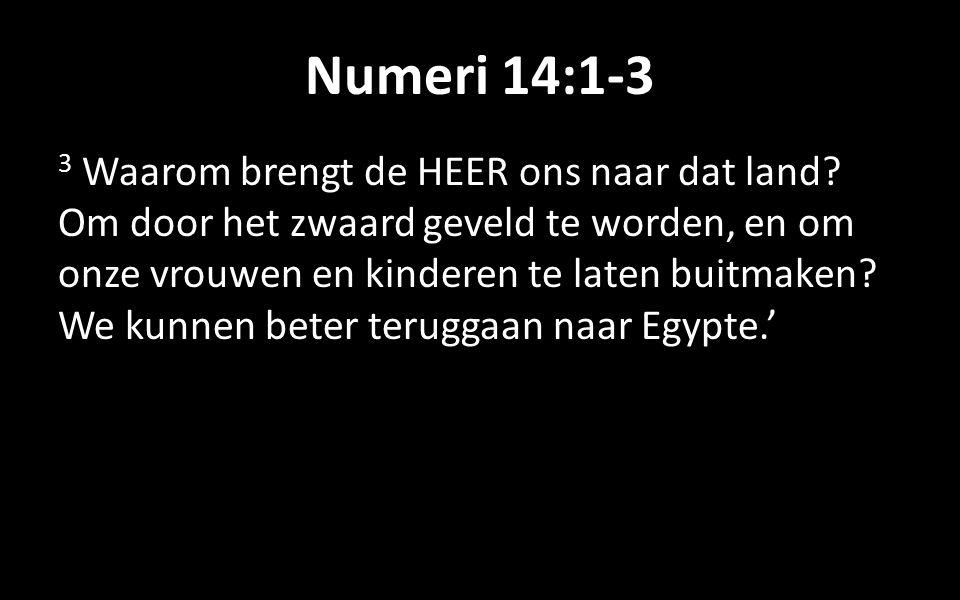 Numeri 14:1-3 3 Waarom brengt de HEER ons naar dat land.
