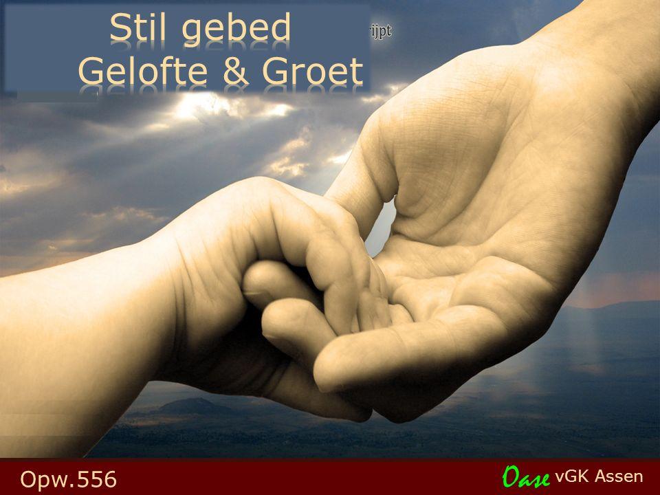 vGK Assen Oase Opw.556