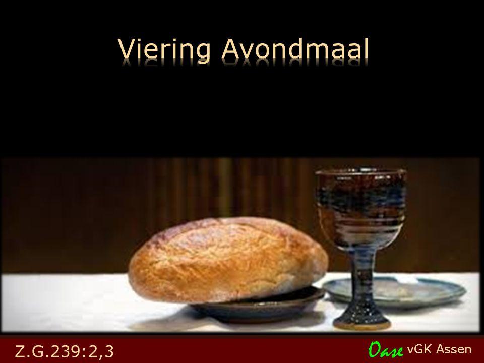 vGK Assen Oase Z.G.239:2,3