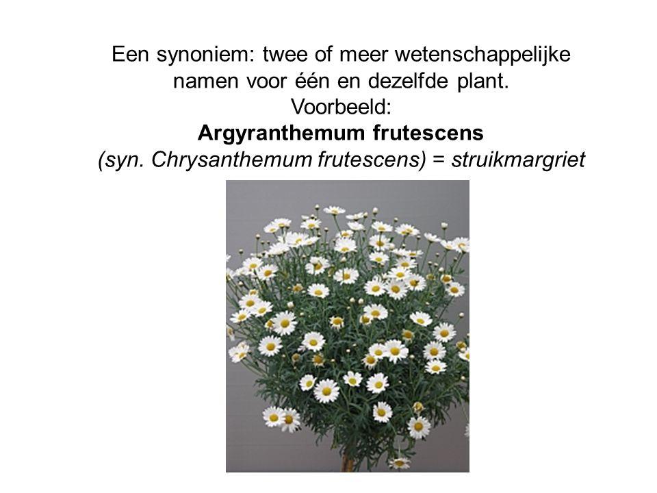 Een synoniem: twee of meer wetenschappelijke namen voor één en dezelfde plant.