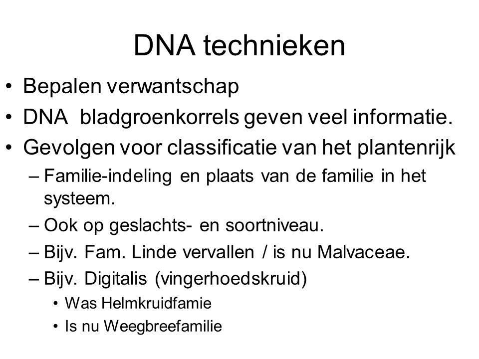 DNA technieken Bepalen verwantschap DNA bladgroenkorrels geven veel informatie.