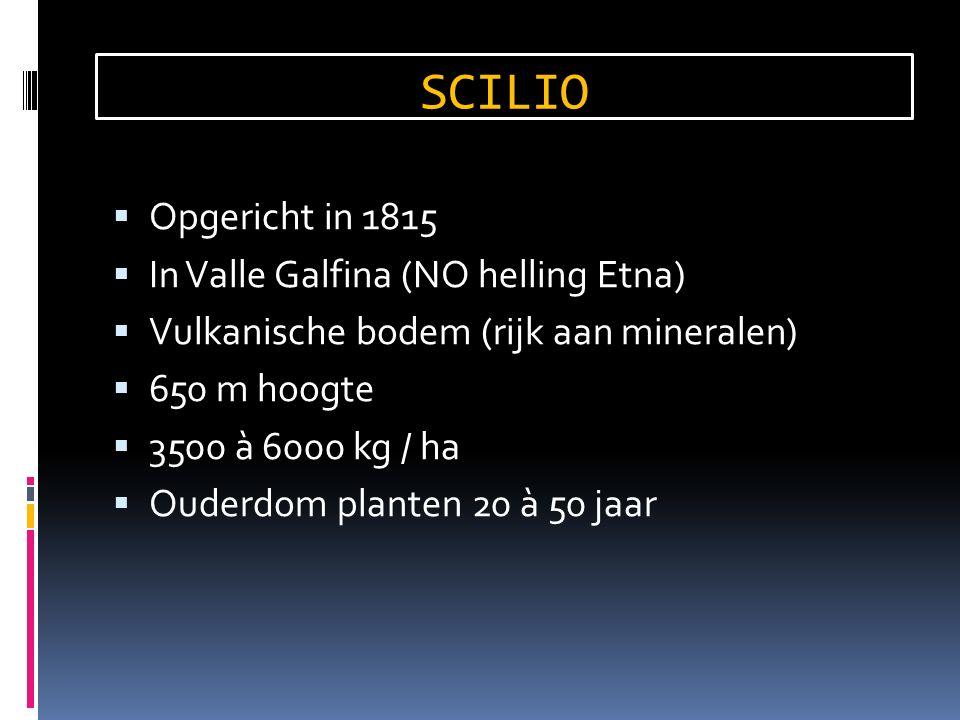  Opgericht in 1815  In Valle Galfina (NO helling Etna)  Vulkanische bodem (rijk aan mineralen)  650 m hoogte  3500 à 6000 kg / ha  Ouderdom planten 20 à 50 jaar SCILIO