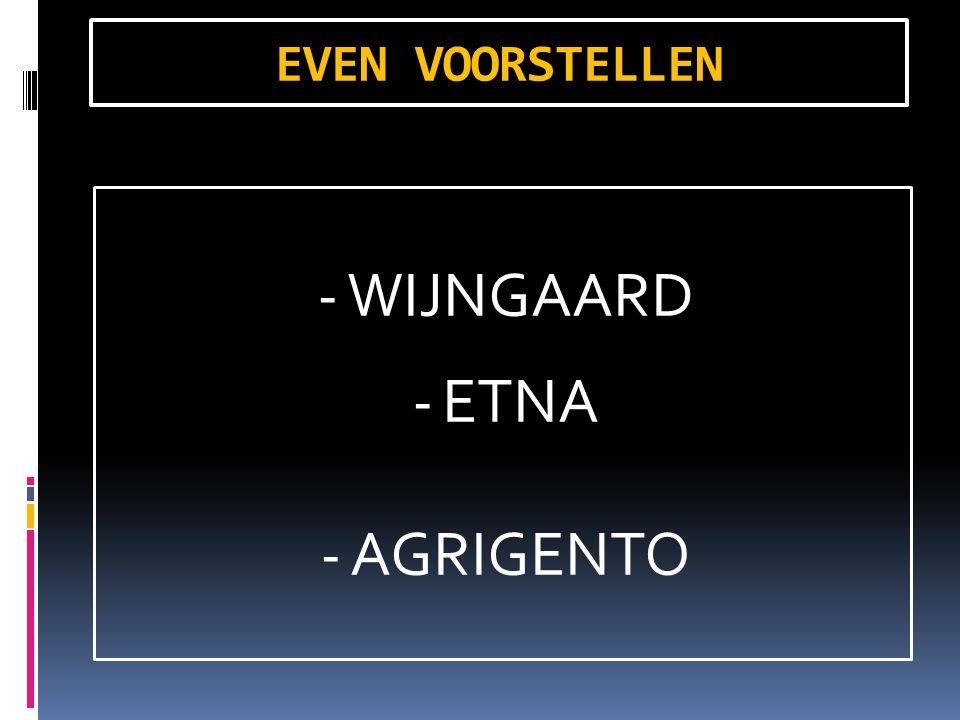 EVEN VOORSTELLEN -WIJNGAARD -ETNA -AGRIGENTO