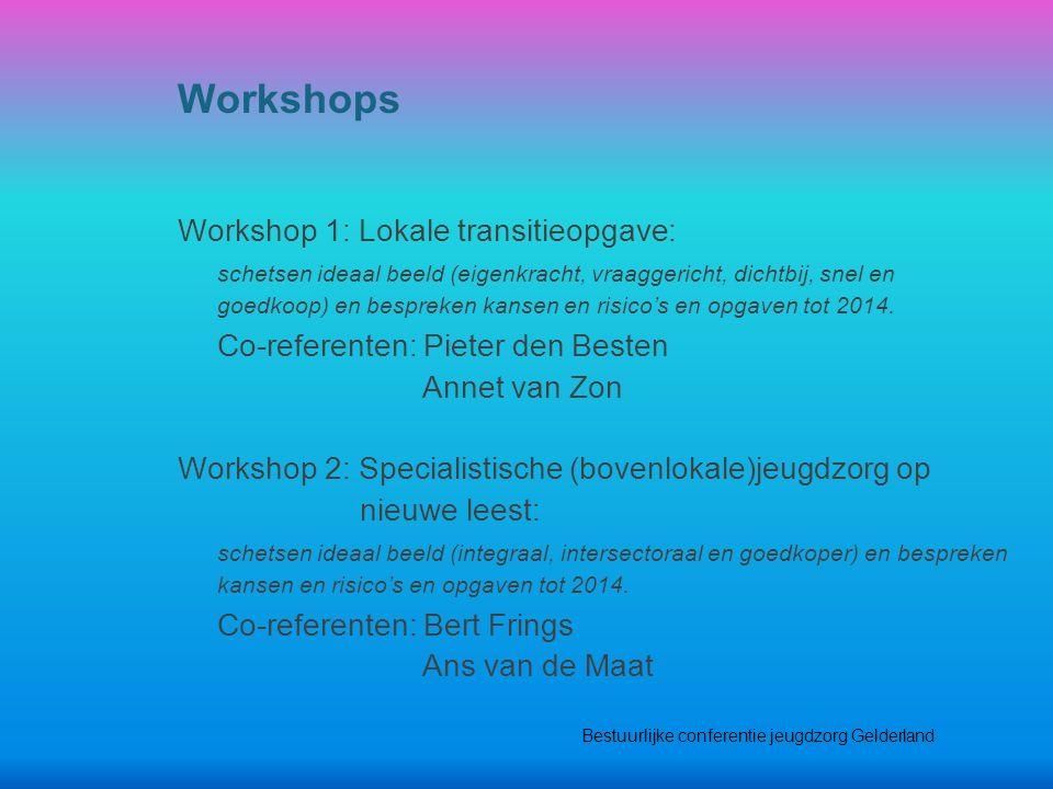 Workshop 1: Lokale transitieopgave: schetsen ideaal beeld (eigenkracht, vraaggericht, dichtbij, snel en goedkoop) en bespreken kansen en risico's en opgaven tot 2014.