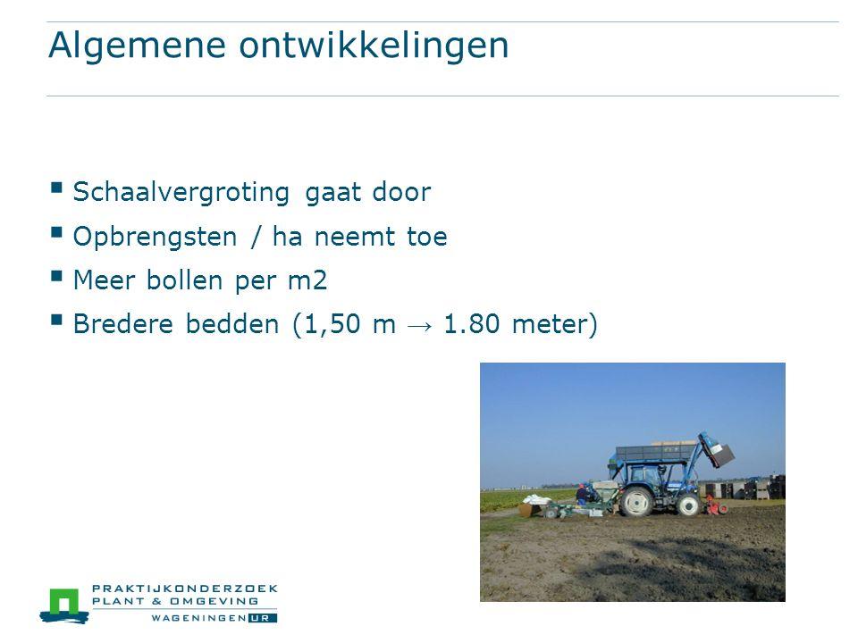 Algemene ontwikkelingen  Schaalvergroting gaat door  Opbrengsten / ha neemt toe  Meer bollen per m2  Bredere bedden (1,50 m → 1.80 meter)