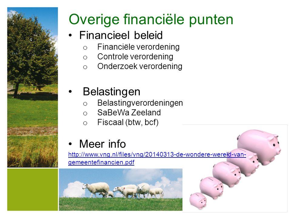Overige financiële punten Financieel beleid o Financiële verordening o Controle verordening o Onderzoek verordening Belastingen o Belastingverordening