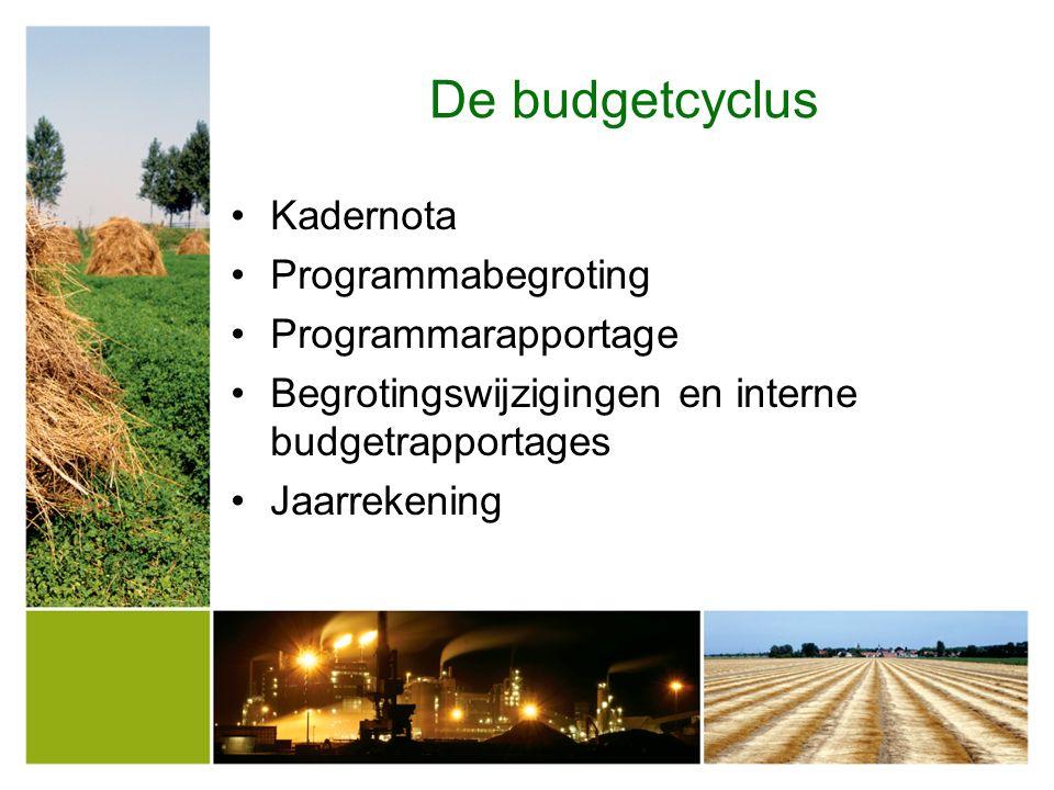 RaadB&W Ambtelijke budgethouder Programma BestuurUitvoeringsbudgetten Vb.