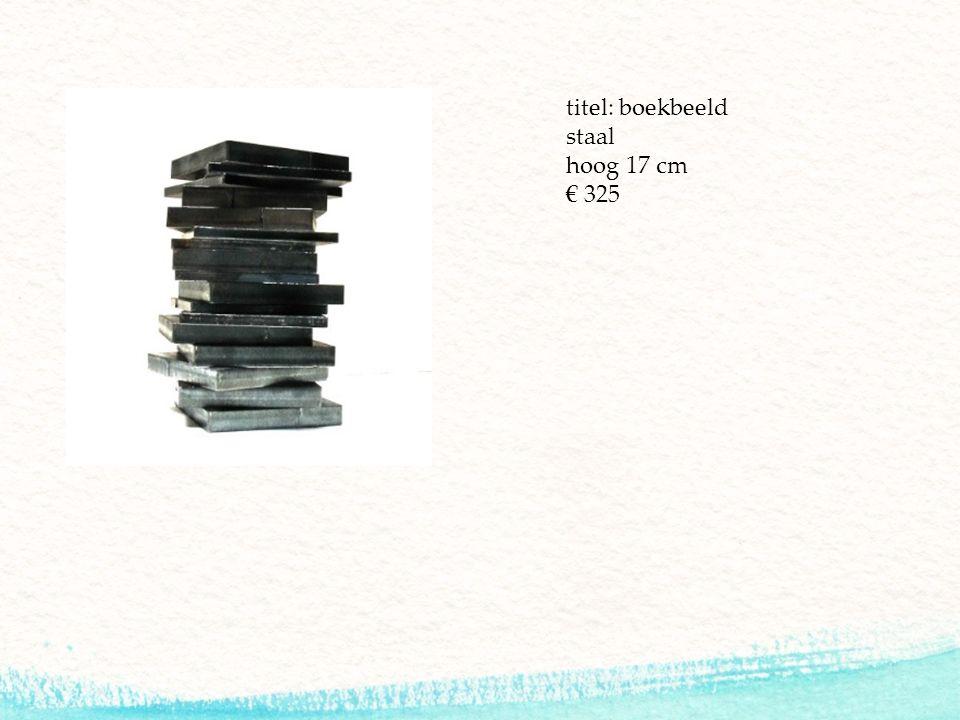 titel: boekbeeld staal hoog 17 cm € 325