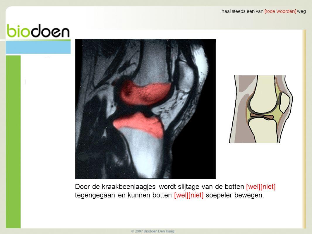 Door de kraakbeenlaagjes wordt slijtage van de botten [wel][niet] tegengegaan en kunnen botten [wel][niet] soepeler bewegen.