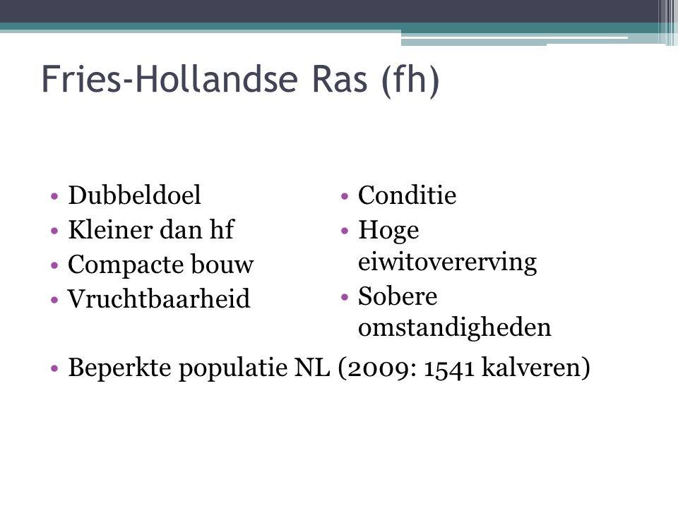 Fries-Hollandse Ras (fh) Dubbeldoel Kleiner dan hf Compacte bouw Vruchtbaarheid Beperkte populatie NL (2009: 1541 kalveren) Conditie Hoge eiwitovererving Sobere omstandigheden