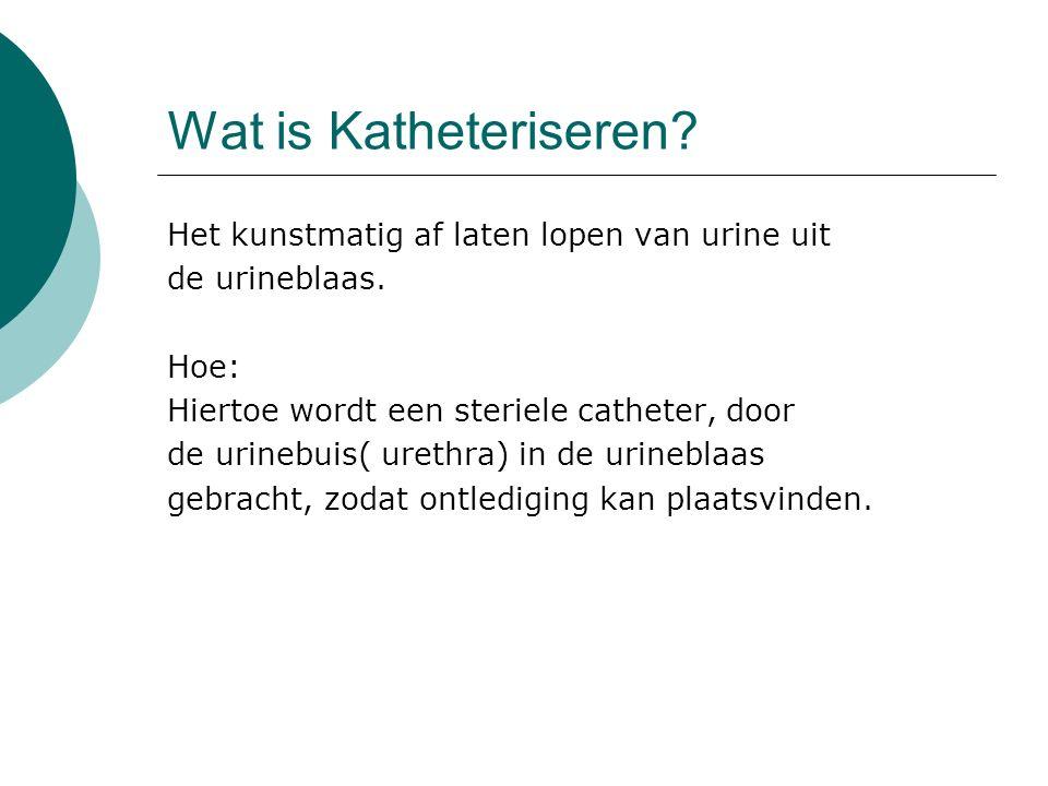 Een Katheter is een buis of canule met een rond uiteinde, om kans op beschadiging van weefsel te verkleinen.