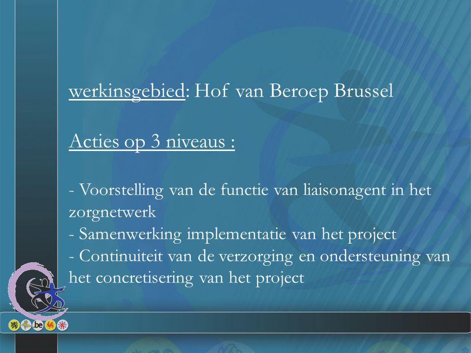 werkinsgebied: Hof van Beroep Brussel Acties op 3 niveaus : - Voorstelling van de functie van liaisonagent in het zorgnetwerk - Samenwerking implementatie van het project - Continuiteit van de verzorging en ondersteuning van het concretisering van het project