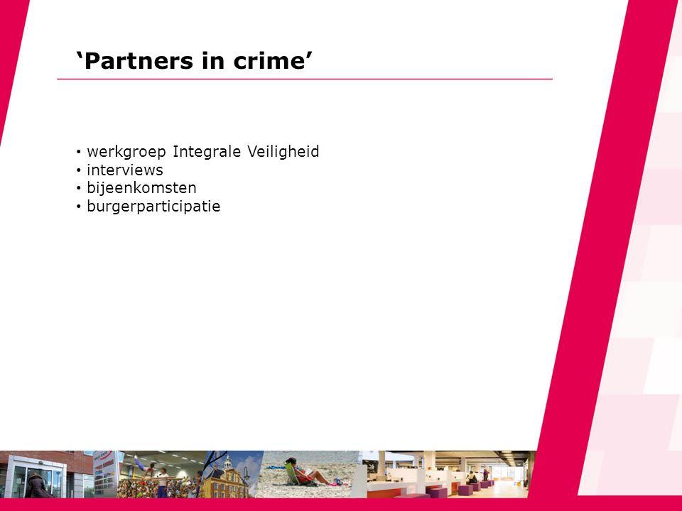 'Partners in crime' werkgroep Integrale Veiligheid interviews bijeenkomsten burgerparticipatie